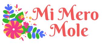 Mi Mero Mole, blog de recetas veganas con un toque Mexicano